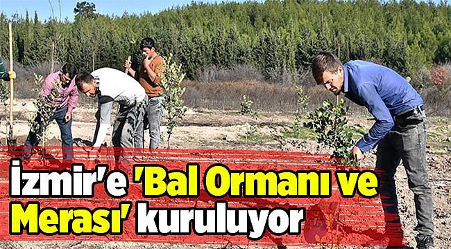 İzmir'e 'Bal Ormanı ve Merası' kuruluyor