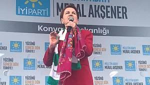 Meral Akşener: Ekonominin içine tükürdünüz