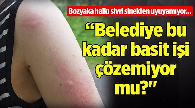 Bozyaka halkı sivri sinekten uyuyamıyor...