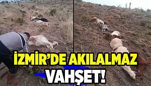 İzmir'de komşu vahşeti!