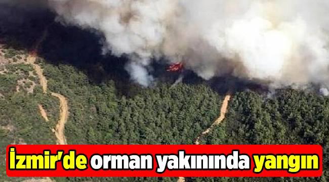 İzmir'de orman yakınında yangın