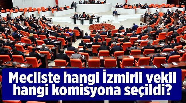 Mecliste hangi İzmirli vekil hangi komisyona seçildi?