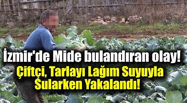 İzmir'de Çiftçi, Tarlayı Lağım Suyuyla Sularken Yakalandı