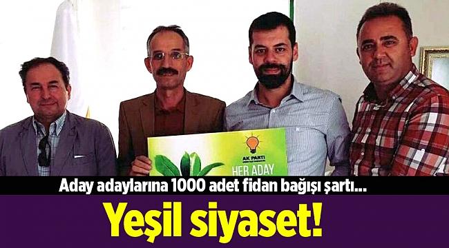 Aday adaylarına 1000 adet fidan bağışı şartı... Yeşil siyaset!