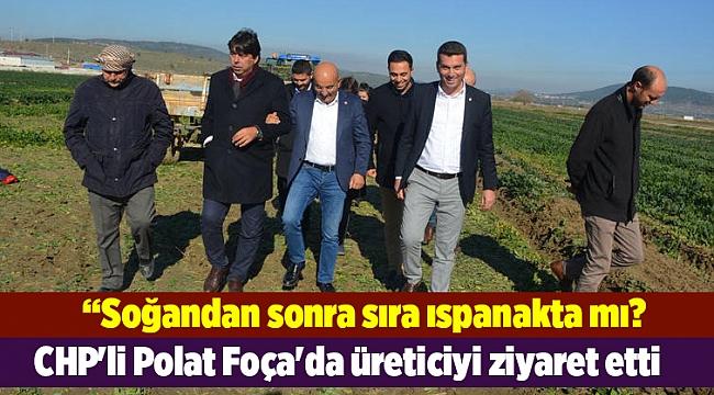 CHP'li Polat Foça'da üreticiyi ziyaret etti