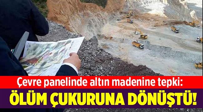 Çevre panelinde altın madenine tepki: Ölüm çukuruna dönüştü