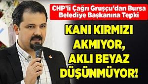 CHP'li Çağrı Gruşçu'dan Bursa Belediye Başkanına Tepki