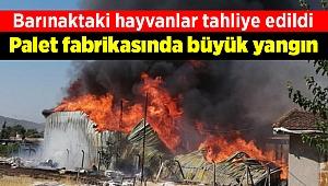 İzmir'de palet fabrikasında büyük yangın