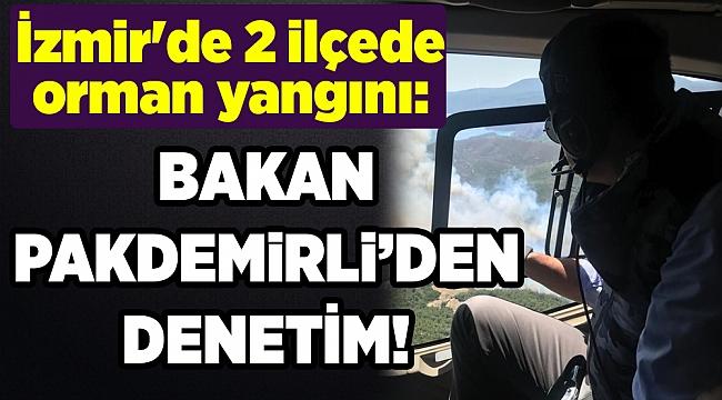 İzmir'de 2 ilçede orman yangını: Bakan'dan denetim!