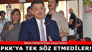 Bakan Pakdemirli'den yangını üstlenen PKK yorumu