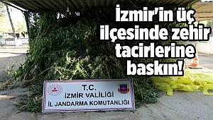 İzmir'in üç ilçesinde zehir tacirlerine baskın!