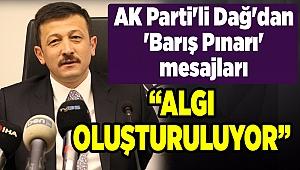 AK Parti'li Dağ'dan 'Barış Pınarı' mesajları