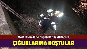 Meles Deresi'ne düşen kadın kurtarıldı