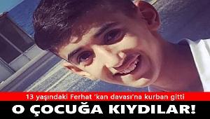 Şırnak'ta 13 yaşındaki Ferhat 'kan davası'na kurban gitti