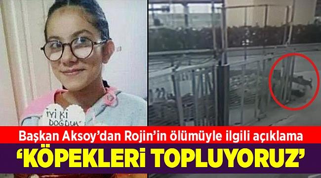 13 yaşındaki Rojin'in ölmesine neden olan köpek sahipli çıktı