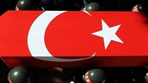 Barış Pınarı'ndan acı haber: 3 asker şehit