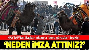 HAYTAP Temsilcisi Önder'den Başkan Aksoy'a 'deve güreşleri' tepkisi
