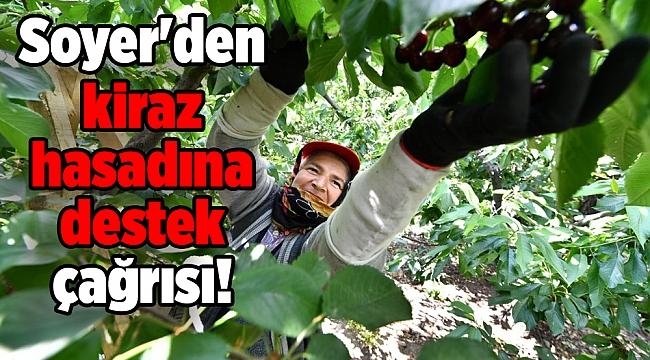 Başkan Soyer'den kiraz hasadına destek çağrısı!