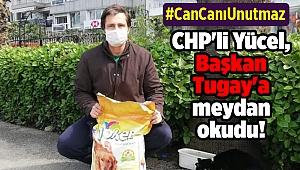 CHP'li Yücel, Başkan Tugay'a meydan okudu!