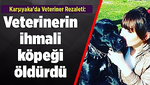 Karşıyaka'da Veteriner Rezaleti: