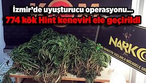 İzmir'de uyuşturucu operasyonu... 774 kök Hint keneviri ele geçirildi