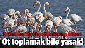 Bakanlıktan Kuş Cenneti'ne koruma kalkanı: Ot toplamak bile yasak!
