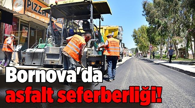Bornova'da asfalt seferberliği!