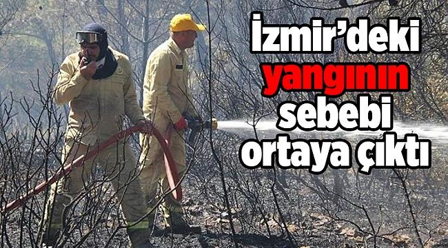 İzmir'deki yangının sebebi ortaya çıktı