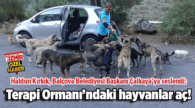 Haldun Kırkık, Balçova Belediyesi Başkanı Çalkaya'ya seslendi: Terapi Ormanı'ndaki hayvanlar aç!