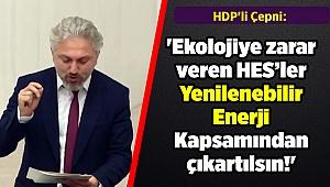 HDP'li Çepni: 'Ekolojiye zarar veren HES'ler Yenilenebilir Enerji Kapsamından çıkartılsın!'