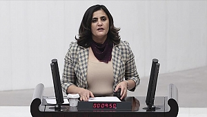 HDP'li Taşdemir'i Gara'da gördüğünü söyleyen teröristin ifadesi ortaya çıktı