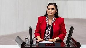 CHP'li Kılıç, görevden uzaklaştırılan iki hemşireyi Meclis gündemine taşıdı