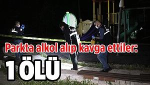 Parkta alkol alıp kavga ettiler: 1 ölü!
