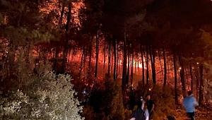 Kontrol altına alındı: Bir yangın da Ölüdeniz Mahallesi'nde
