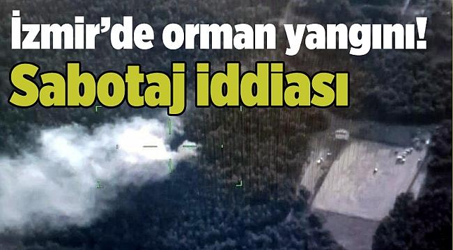 İzmir'de orman yangını! Sabotaj iddiası
