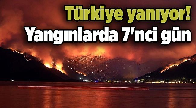Türkiye yanıyor! Yangınlarda 7'nci gün