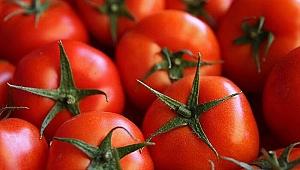 Kan basıncını düşürüyor! Yeni tür domatesler Japonya'da sofralara giriyor